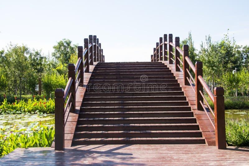 Ασία Κίνα, Wuqing, Tianjin, πράσινο EXPO, η ξύλινη γέφυρα στοκ φωτογραφία με δικαίωμα ελεύθερης χρήσης