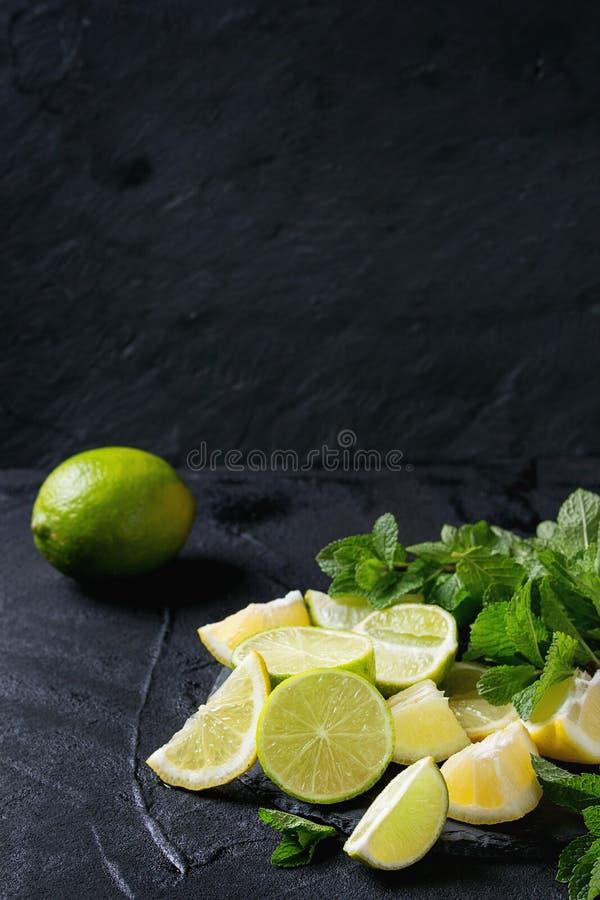 Ασβέστης και λεμόνια με τη μέντα στοκ εικόνα