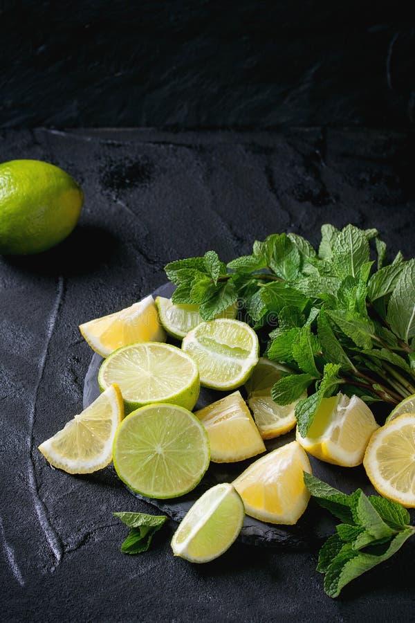 Ασβέστης και λεμόνια με τη μέντα στοκ φωτογραφία