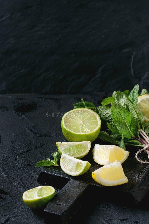 Ασβέστης και λεμόνια με τη μέντα στοκ φωτογραφίες