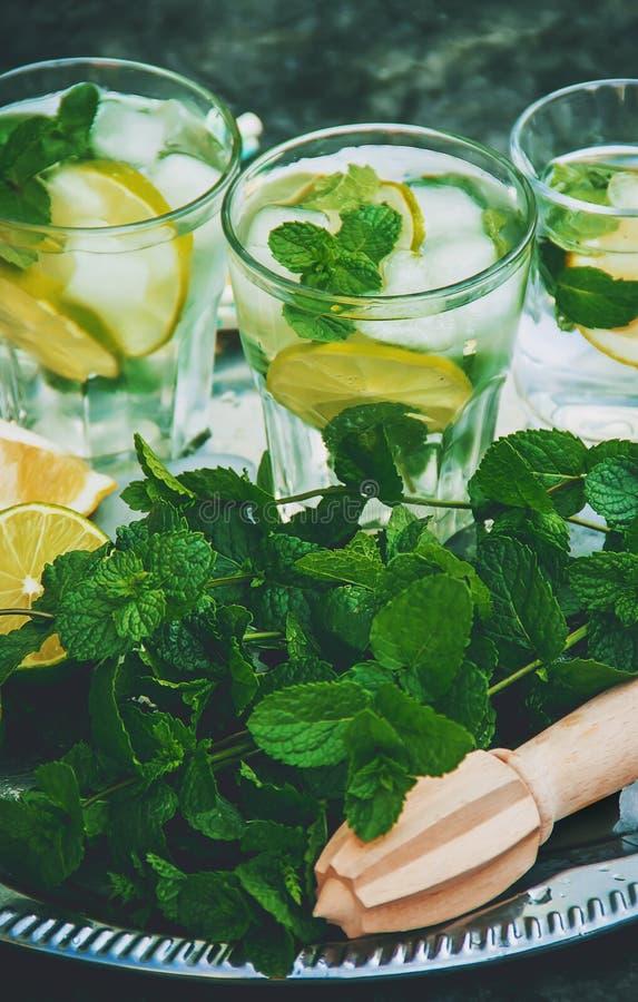 Ασβέστης και μέντα ποτών στοκ φωτογραφίες