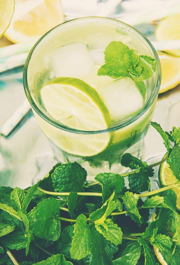 Ασβέστης και μέντα ποτών r τρόφιμα στοκ εικόνες με δικαίωμα ελεύθερης χρήσης
