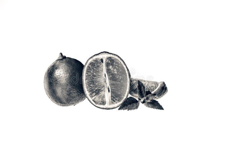 ασβέστης Φέτες και μέντα φρούτων που απομονώνονται σε ένα άσπρο υπόβαθρο στοκ εικόνες με δικαίωμα ελεύθερης χρήσης