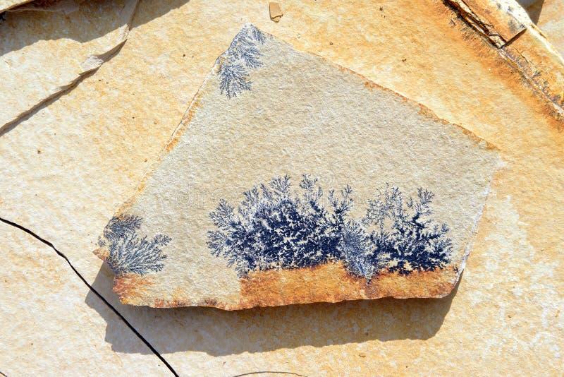 Ασβεστόλιθος με τους δενδρίτες μαγγάνιου στοκ εικόνες