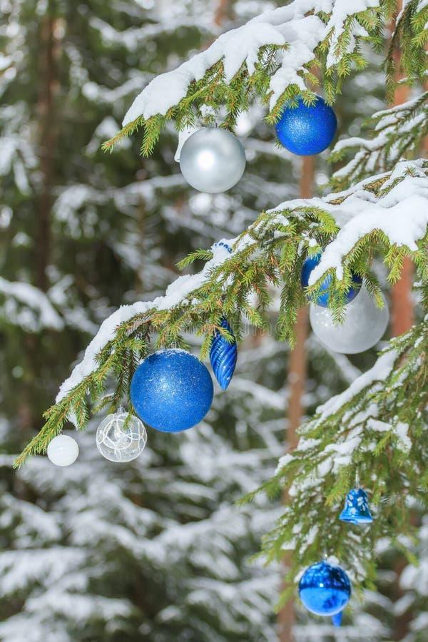 Ασημένιες και μπλε διακοσμήσεις μπιχλιμπιδιών Χριστουγέννων οι εορταστικές λαμπρές υπαίθρια στο χιονώδες έλατο διακλαδίζονται στοκ φωτογραφία