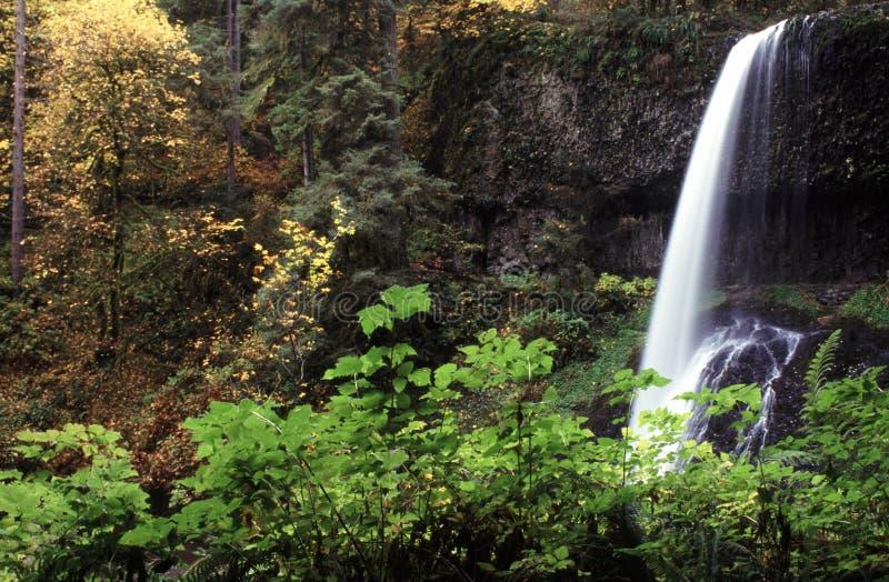 ασημένιο κράτος πάρκων northfalls κ&o στοκ εικόνα με δικαίωμα ελεύθερης χρήσης