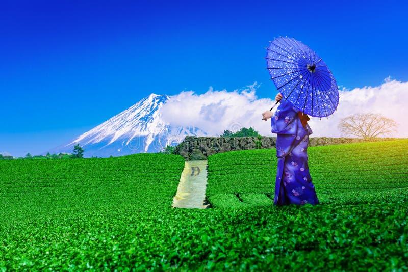 Ασιάτισσα ταξιδιώτης που φοράει ιαπωνικό παραδοσιακό κιμονό στα βουνά Φούτζι και φυτεία πράσινου τσαγιού στη Σιζουόκα της Ιαπωνία στοκ εικόνα με δικαίωμα ελεύθερης χρήσης