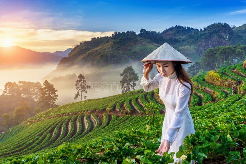 Ασιατική γυναίκα που φορά τον πολιτισμό του Βιετνάμ παραδοσιακό στον κήπο φραουλών στην ανατολή στοκ φωτογραφία με δικαίωμα ελεύθερης χρήσης