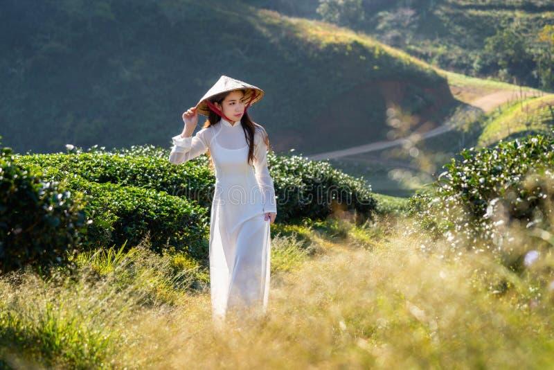 Ασιατική γυναίκα που φορά τον πολιτισμό του Βιετνάμ παραδοσιακό στον πράσινο τομέα τσαγιού στοκ εικόνα