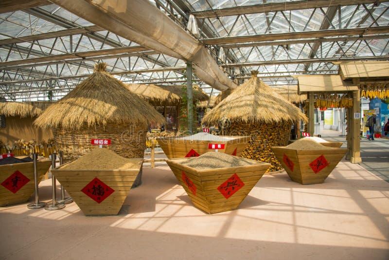 Ασιατική Κίνα, Πεκίνο καρναβάλι, γεωργία, σχεδιάγραμμα τοπίων, σιτοβολώνας στοκ φωτογραφίες