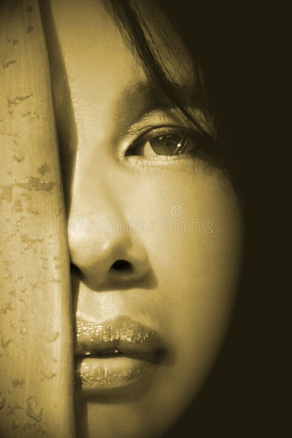 ασιατική στενή επάνω γυναί&k στοκ φωτογραφίες
