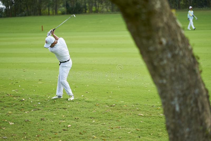 Ασιατική ταλαντεμένος λέσχη παικτών γκολφ για ένα κτύπημα στο γήπεδο του γκολφ στοκ εικόνες