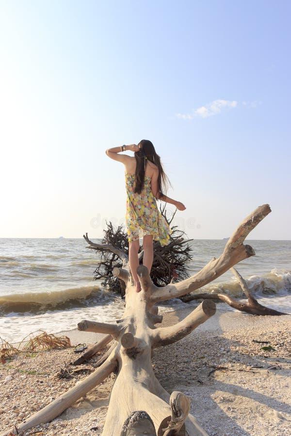 ασιατική όμορφη γυναίκα π&alpha στοκ εικόνα με δικαίωμα ελεύθερης χρήσης