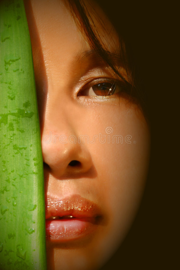 ασιατική όμορφη γυναίκα 2 στοκ εικόνα με δικαίωμα ελεύθερης χρήσης