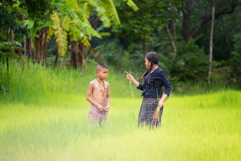 Ασιατικός αγρότης παιδιών στον πράσινο τομέα ρυζιού Έννοια οικολογίας στο θόριο στοκ εικόνα