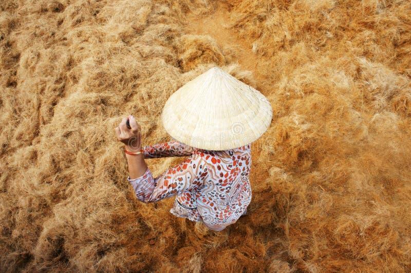 Ασιατικός εργαζόμενος, καρύδα, βιετναμέζικα, κοΐρ, Mekong δέλτα στοκ εικόνα