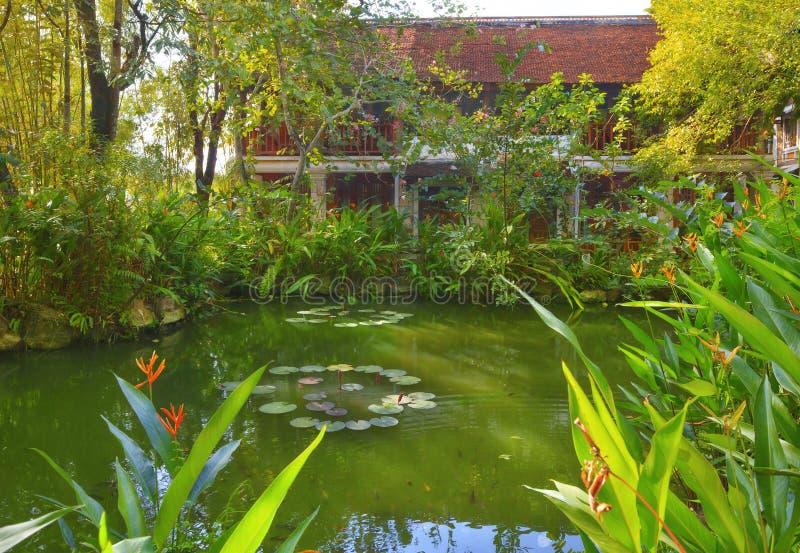 Ασιατικός τροπικός κήπος στοκ φωτογραφία με δικαίωμα ελεύθερης χρήσης
