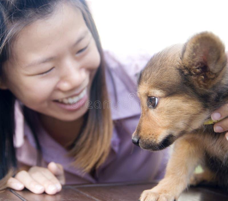ασιατικό κουτάβι κοριτσ στοκ εικόνα