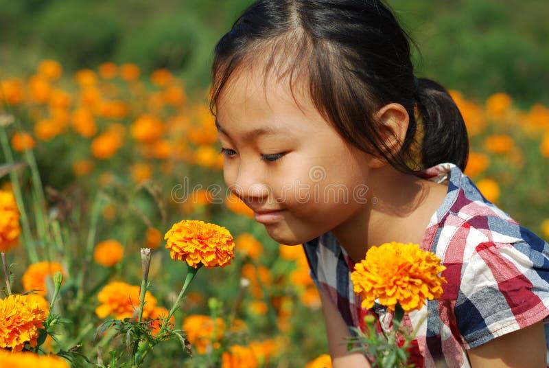 Ασιατικό μικρό κορίτσι στο θερινό κήπο στοκ εικόνα