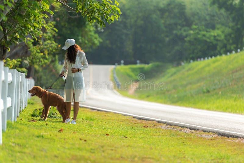 Ασιατικό περπάτημα γυναικών τρόπου ζωής τόσο ευχαριστημένο από το χρυσό retriever σκυλί φιλίας κοντά στο δρόμο στοκ εικόνα