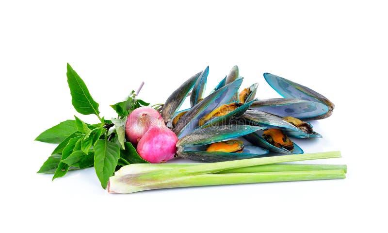 Ασιατικό πράσινο μύδι που βράζεται με το χορτάρι στοκ φωτογραφία