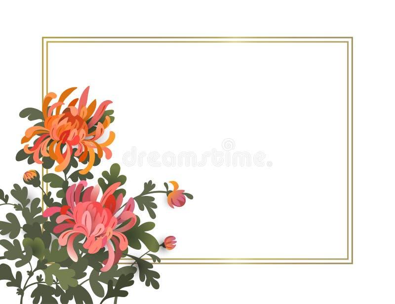 Ασιατικό υπόβαθρο ύφους με τα λουλούδια χρυσάνθεμων Κομψό floral πρότυπο σχεδίου πλαισίων με το διάστημα για το κείμενό σας απεικόνιση αποθεμάτων
