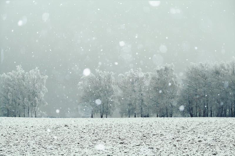 δασικός χειμώνας χιονιού τοπίων στοκ φωτογραφία με δικαίωμα ελεύθερης χρήσης