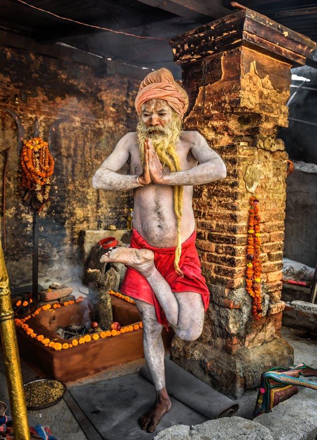 Ασκήσεις sadhu Shaiva (ιερό άτομο) στο ναό Pashupatinath, Κατμαντού στοκ φωτογραφίες