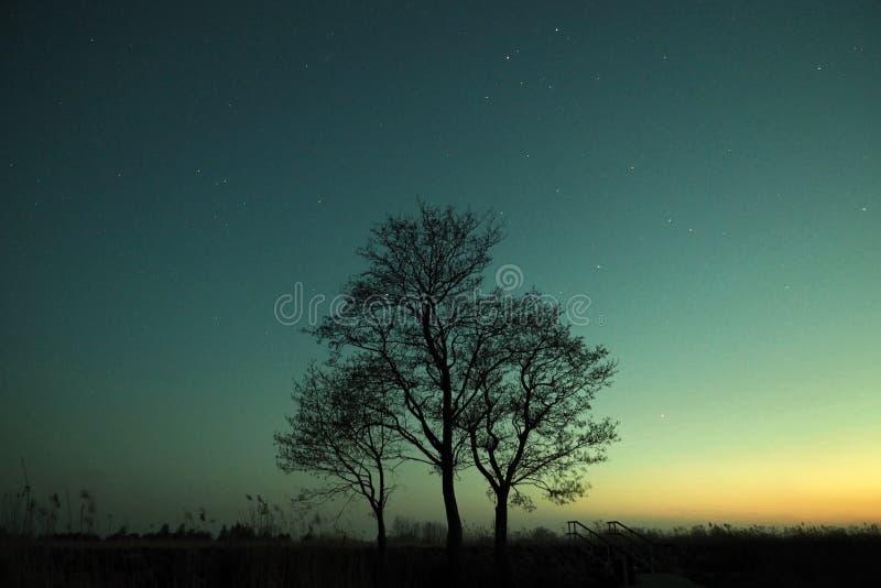 Αστέρια νυχτερινού ουρανού και γαλακτώδης τρόπος που παρατηρούν, αστερισμός Διδυμων στοκ φωτογραφίες