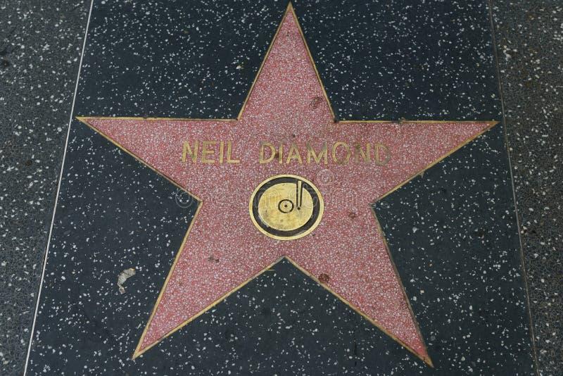 Αστέρι διαμαντιών του Neil στον περίπατο Hollywood της φήμης στοκ εικόνα