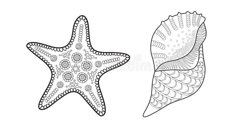 Αστέρι θάλασσας και κοχύλι, διανυσματική απεικόνιση για το ενήλικο χρωματίζοντας βιβλίο διανυσματική απεικόνιση