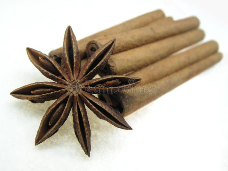 αστέρι καρυκευμάτων κανέλας γλυκάνισου στοκ φωτογραφία