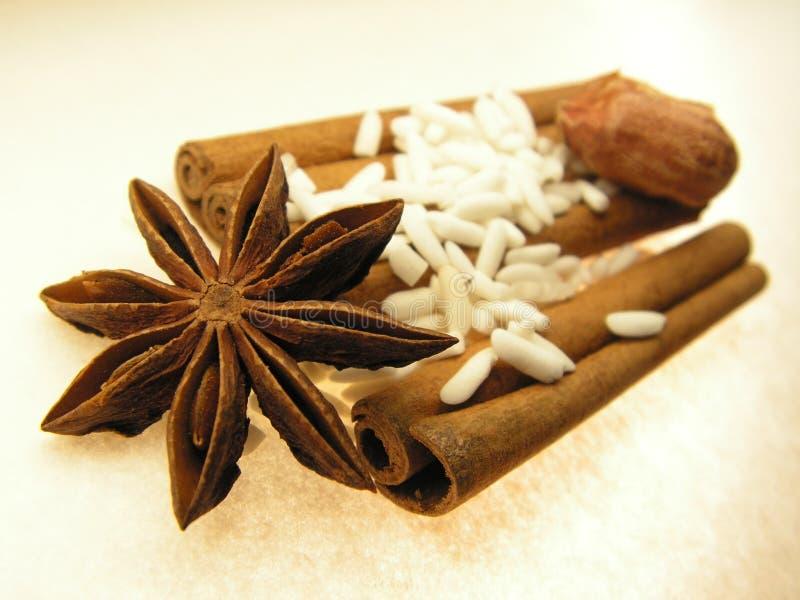 αστέρι καρυκευμάτων ρυζ&io στοκ φωτογραφία με δικαίωμα ελεύθερης χρήσης