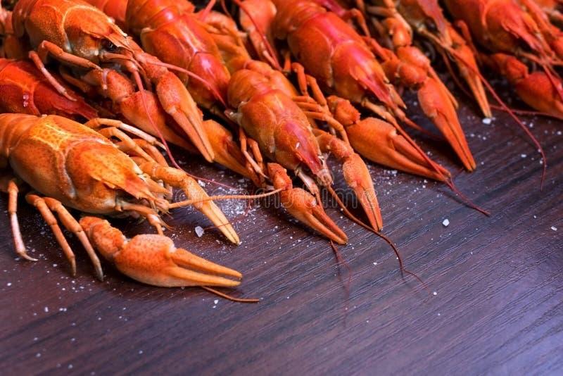 Αστακοί για ένα εστιατόριο θαλασσινών Κόμμα αστακών, εστιατόριο, καφές, επιλογές μπαρ στοκ φωτογραφία