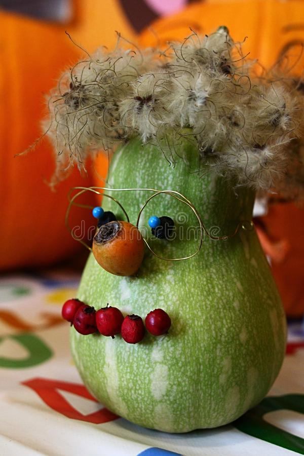 Αστεία διακόσμηση αποκριών - πράσινη κολοκύθα που διακοσμείται με τα ροδαλά ισχία ως μύτη και στόμα, γυαλιά φιαγμένα από καλώδιο  στοκ φωτογραφία με δικαίωμα ελεύθερης χρήσης