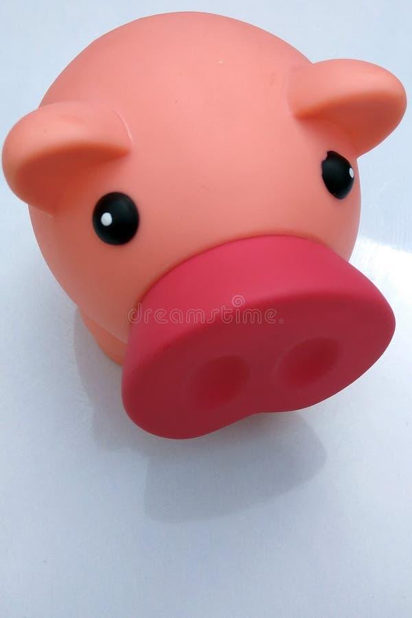 Αστεία ρόδινη piggy τράπεζα με τη μεγάλη μύτη στοκ εικόνα