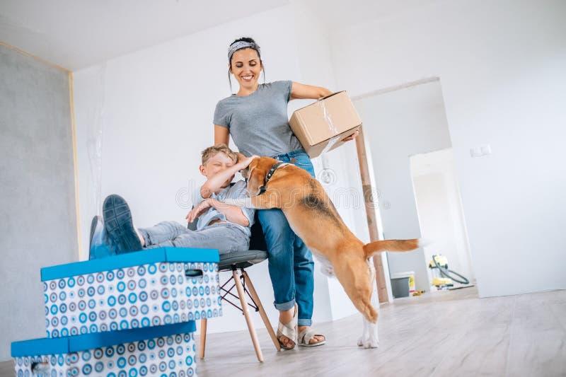 Αστεία σκηνή με το σκυλί λαγωνικών - οικογενειακή κίνηση στο νέο διαμέρισμα στοκ εικόνα με δικαίωμα ελεύθερης χρήσης