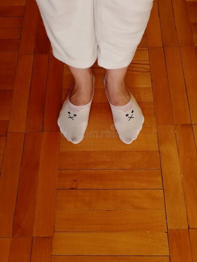 αστείες κάλτσες στοκ εικόνες
