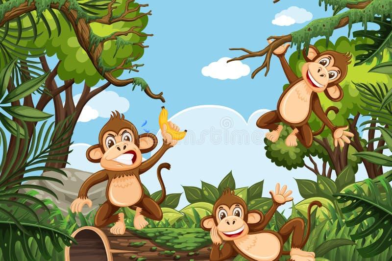 Αστείοι πίθηκοι στη σκηνή ζουγκλών ελεύθερη απεικόνιση δικαιώματος