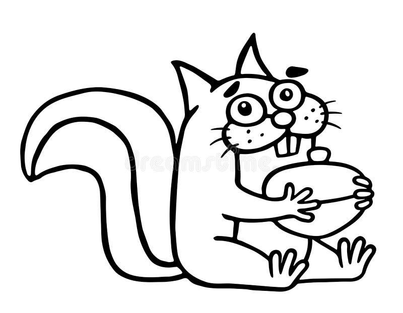 Αστείοι σκίουρος και καρύδι επίσης corel σύρετε το διάνυσμα απεικόνισης ελεύθερη απεικόνιση δικαιώματος
