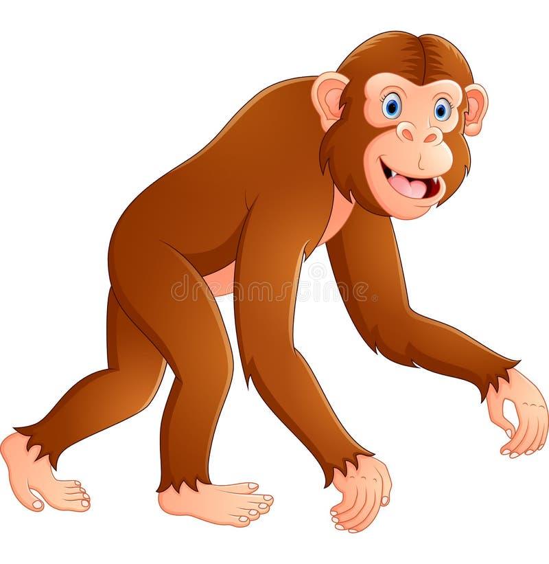 αστείος πίθηκος κινούμενων σχεδίων διανυσματική απεικόνιση