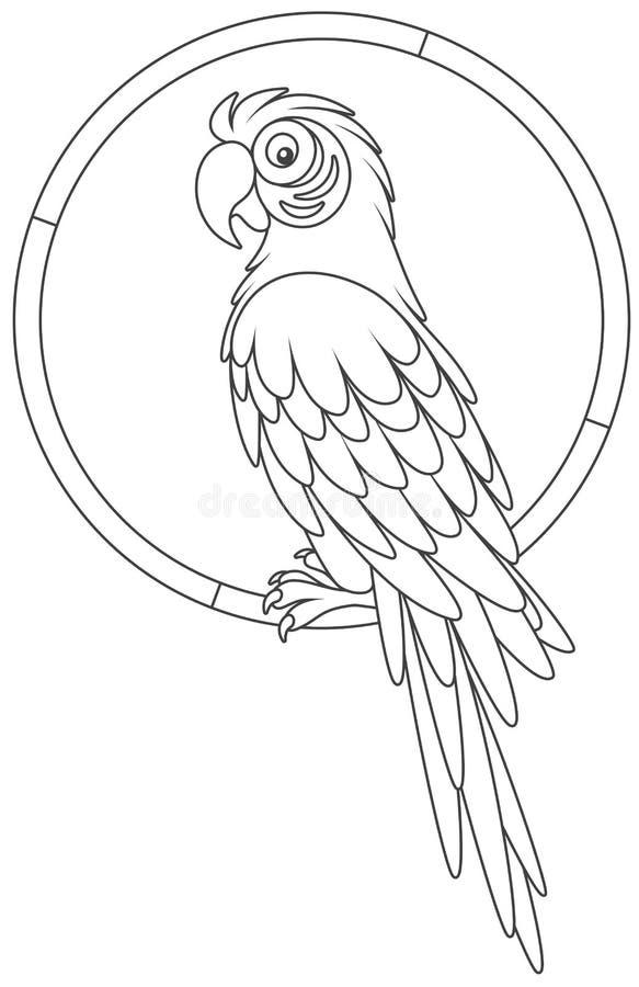 Αστείος παπαγάλος macaw που στηρίζεται απεικόνιση αποθεμάτων