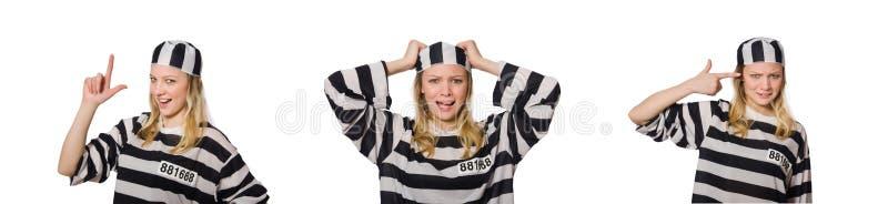 Αστείος τρόφιμος φυλακών στην έννοια στοκ εικόνα