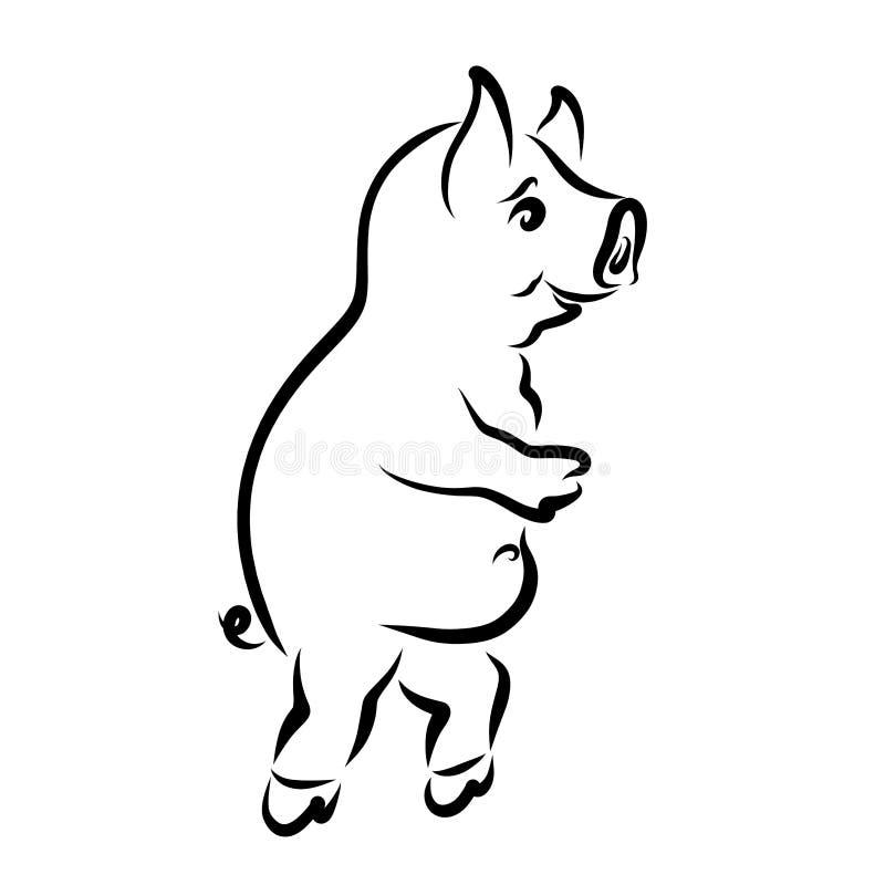 Αστείος χοίρος που τρέχει σε δύο πόδια, δημιουργικός αθλητισμός διανυσματική απεικόνιση