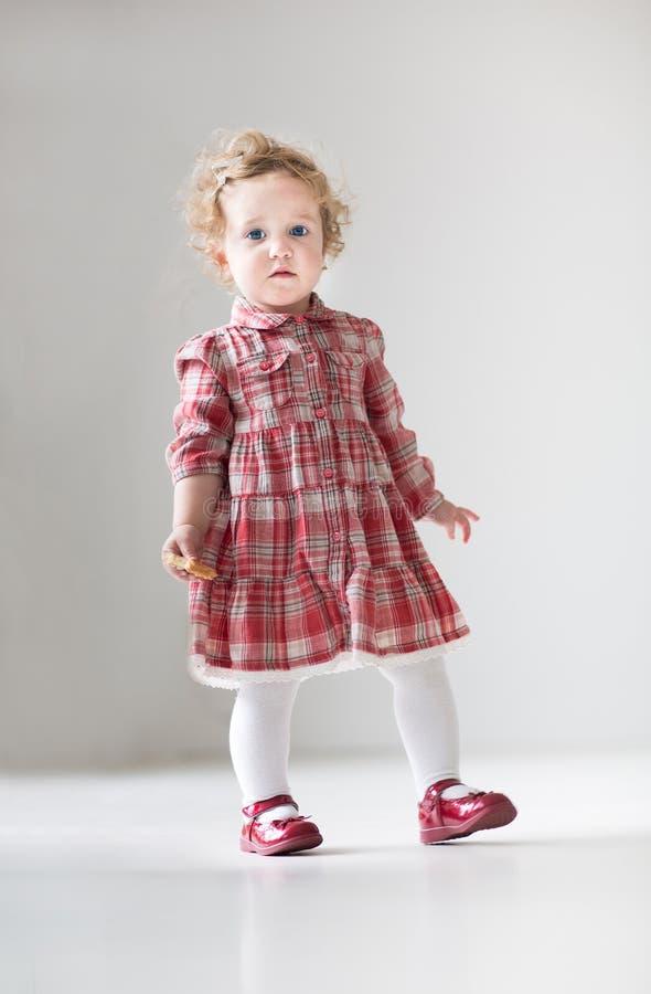 Αστείο σγουρό κοριτσάκι στο κόκκινο φόρεμα που περπατά με το μπισκότο στοκ φωτογραφίες