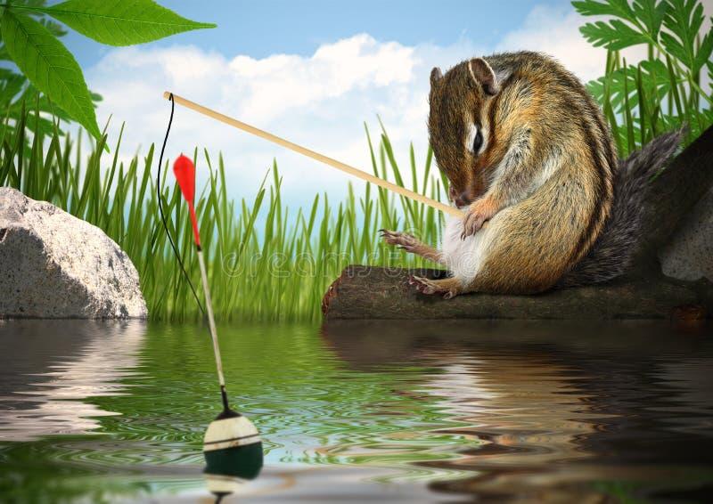 Αστείο chipmunk που αλιεύει, έννοια ψαράδων στοκ φωτογραφίες με δικαίωμα ελεύθερης χρήσης