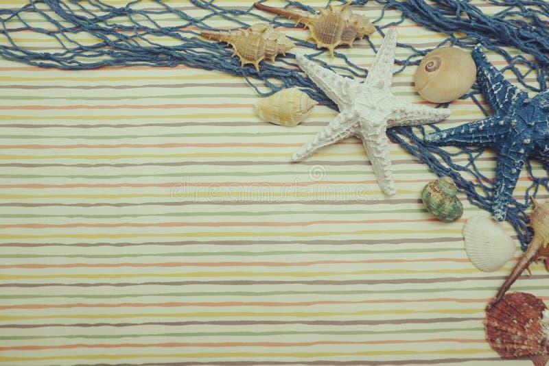 Αστερίας και θαλασσινό κοχύλι με την καθαρή διακόσμηση στοκ φωτογραφία με δικαίωμα ελεύθερης χρήσης