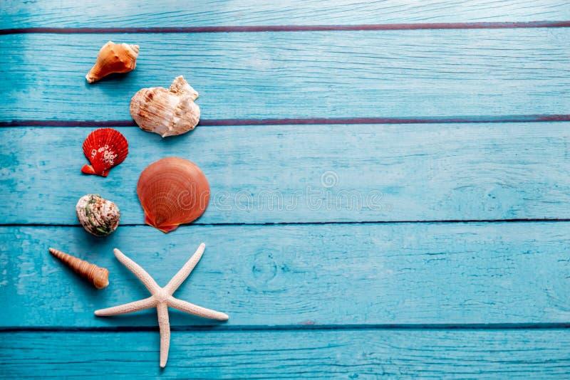 Αστερίας και πολλά θαλασσινά κοχύλια στο μπλε ξύλινο κατασκευασμένο υπόβαθρο στοκ φωτογραφία