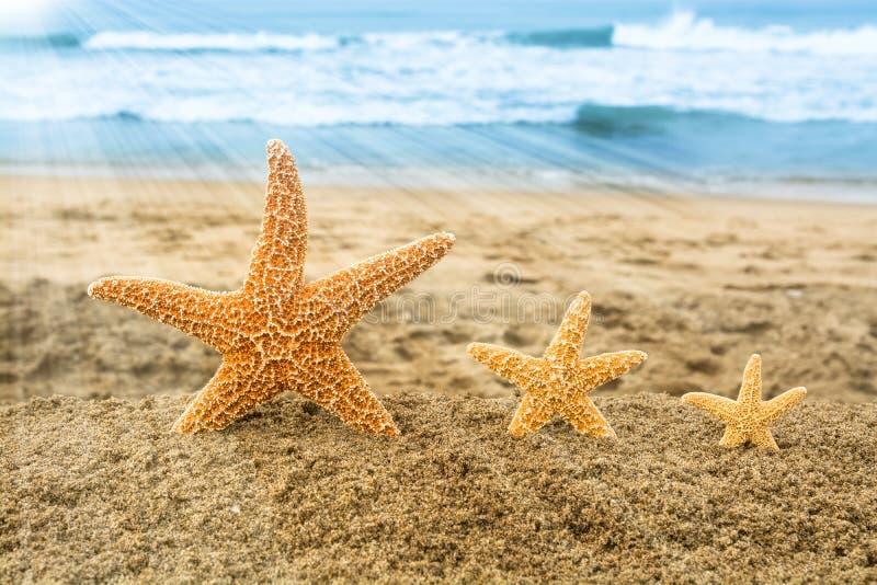 Αστερίας τρία που αγνοεί τον ωκεανό στοκ φωτογραφία