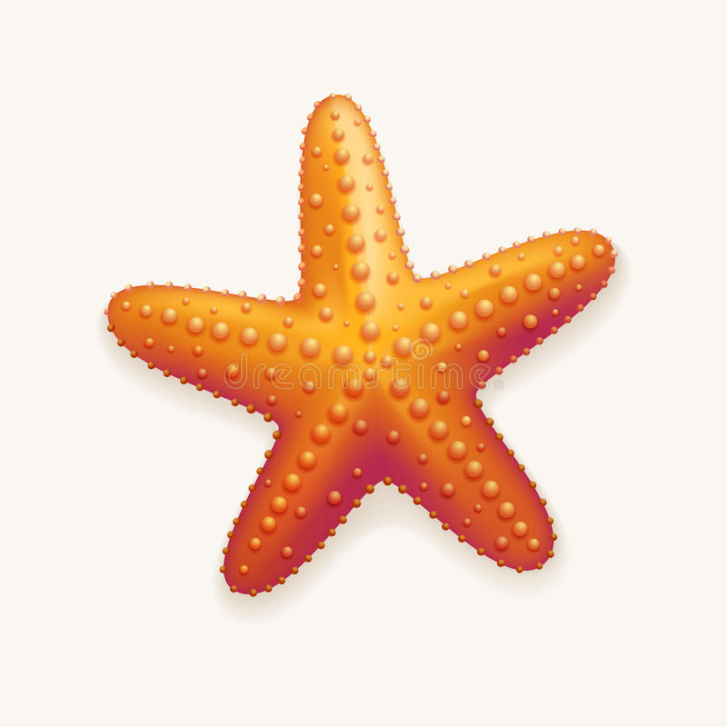 Αστερίας διανυσματική απεικόνιση